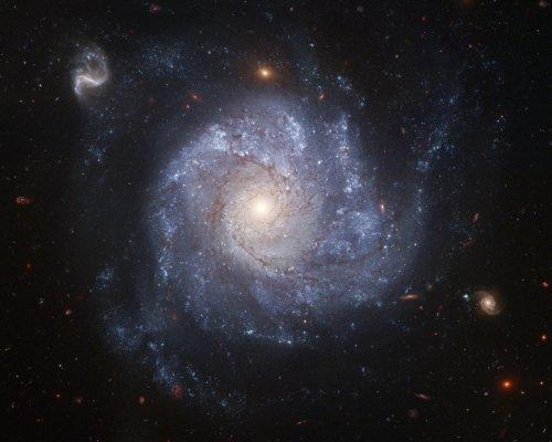 Hubble Space Telescope Photo Spiral Galaxy Nasa Photos 8X10
