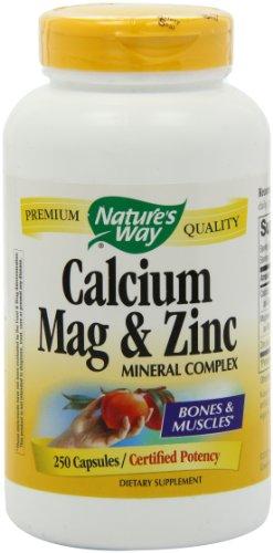 Chemin de calcium, de magnésium et de zinc de la