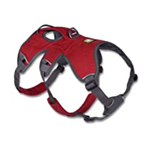 Web Master Harness, X-Small, Red Currant