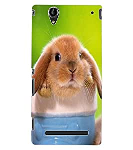 ColourCraft Funny Rat Design Back Case Cover for SONY XPERIA T2 ULTRA DUAL D5322