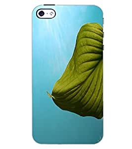 APPLE IPHONE 4 VIEW Back Cover by PRINTSWAG