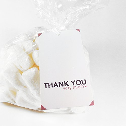 Pink Thank You Very Much Gift Tags And Gift Bags Set, 24 Count front-90838