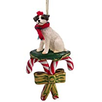 JACK RUSSELL TERRIER Dog Brn/Wht CANDY CANE Christmas Ornament