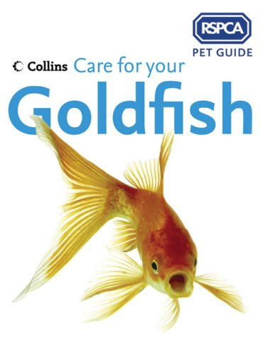 rspca-pet-guide-care-for-your-goldfish