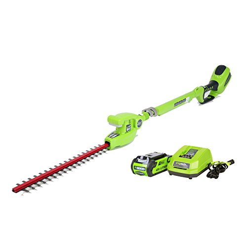 GreenWorks 22272 G-MAX 40V 20-Inch Cordless Pole Hedge Trimmer, 2Ah Battery and Charger Included (Greenworks Bush Trimmer Cord compare prices)