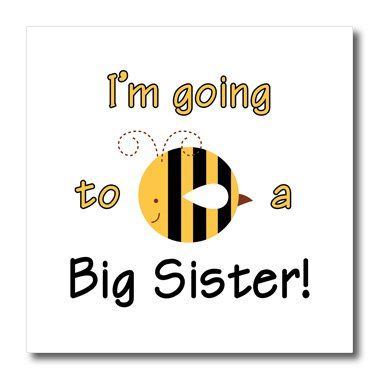 3dRose ht_157417_1 I'm Going to be a Big Sister. Bumble Bee-Iron on Heat Transfer Paper for White Material, 8 by 8-Inch (Iron Sister compare prices)