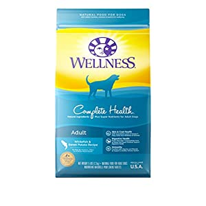 Wellness Complete Health Whitefish & Sweet Potato Natural Dry Dog Food, 5-Pound Bag