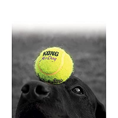 KONG Air Dog Squeaker Ball for Dogs, X-Large
