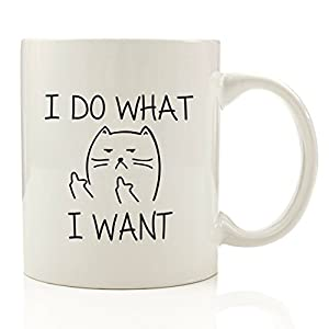 I Do What I Want Cat Funny Coffee Mug - Unique Christmas Present Idea for Men & Women, Him or Her - Best Office Cup & Birthday Gag Gift for Coworkers, Mom, Dad, Kids, Son, Daughter, Husband or Wife