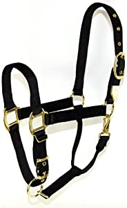 Hamilton 1-Inch Nylon Halter with Adjustable Chin, Black - Draft Horse Size