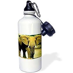 3dRose wb_509_1 African Elephant Sports Water Bottle, 21 oz, White