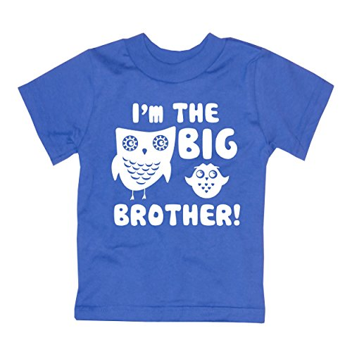 Happy Family Clothing Little Boys' I'm The Big Brother T-Shirt (4T, Royal Blue) (Im The Little Brother Shirt compare prices)