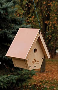 WoodLink Wren House Cedar Bird House with Copper Roof