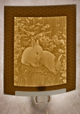 Baby Bunnies - Curved Lithophane Porcelain Night Light