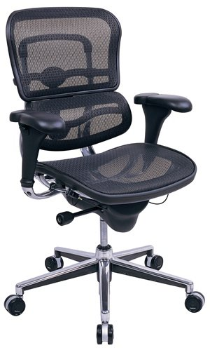 Eurotech Ergohuman Mid Back Mesh Ergonomic Chair