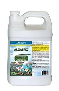 API Pondcare Algaefix Algae Control, 1-Gallon