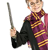 Harry Potter Wand Accessory (9704)