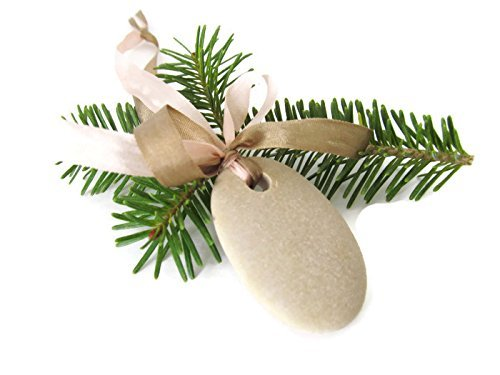 Beach Stone Christmas Tree Ornament, Lake Michigan Beach Stone, Silk Ribbons, Natural Holiday Decor, American Made