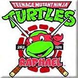 Teenage Mutant Ninja Turtles TMNT Raphael Rafael Fridge Magnet