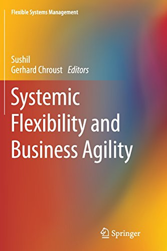 Systemic Flexibility and Business Agility (Flexible Systems Management)