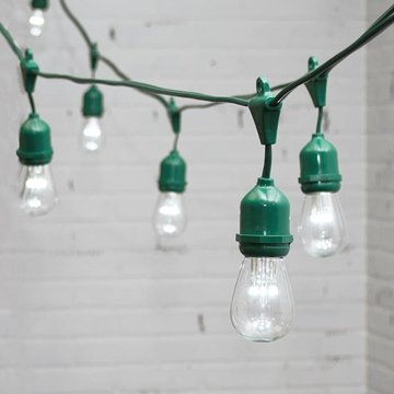 Commercial Led Edison Drop String Lights, 100 Ft Green Wire, S14, Cool White