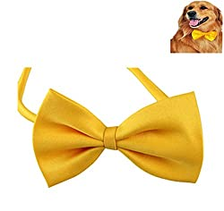 Futaba Fashion Dog Bowknot Tie - Yellow