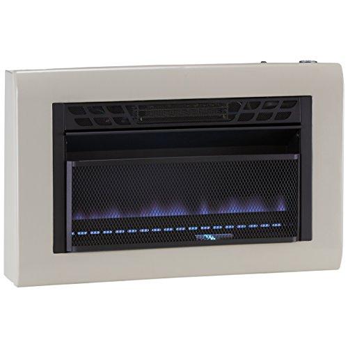 Cedar Ridge Hearth Dual Fuel Vent Free Blue Flame Heater - 30,000 BTU, T-STAT Control (Cedar Ridge Heater compare prices)