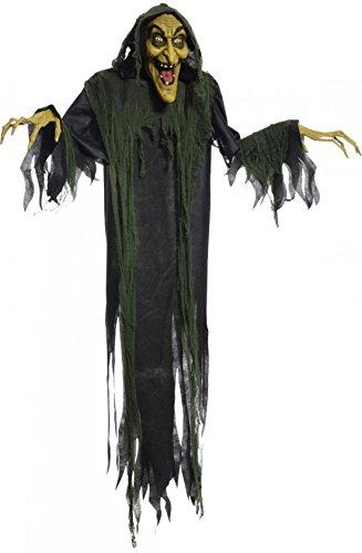 1 Pcs (Khaleesi Dog Costume)