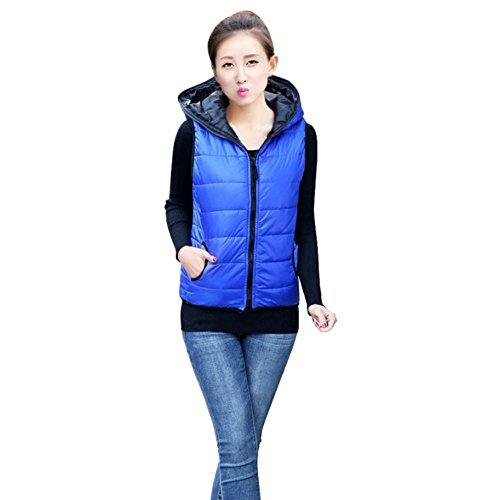 Hengzhi Women's Cute Sleeveless Light Padded Quilted Vest Hooded Down Waistcoat (Quilted Waistcoat compare prices)