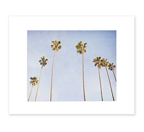 4180mZ1b3fL The Best Palm Tree Art You Can Buy