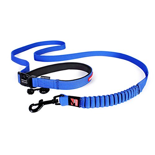 ezydog-road-runner-dog-lead-82-inch-blue