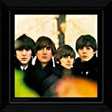 The Beatles For Sale Framed Album Cover