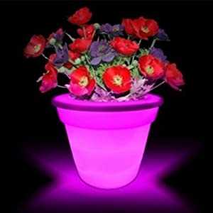 Amazon.com: Instapark® Flower Power Color changing LED Plant Pot ...