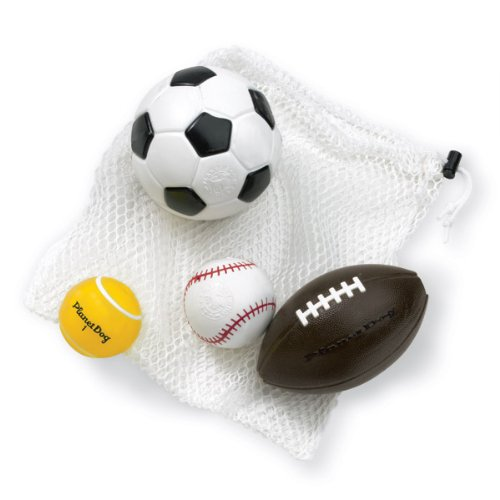 Planet Dog Orbee-Tuff Sport Coach's Bag – Football, Soccer Ball, Baseball and Tennis Ball