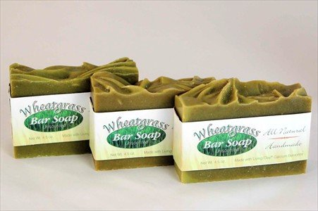 Wheatgrass & Calcium Bentonite Clay Soap - Unscented - 3 Bars - Living Clay Exfoliant Skin Care Soap For Oily Skin - Wheat Grass Face & Body Soap