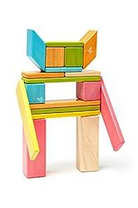 Tegu Magnetic Fair Trade Wooden Toys - 24-piece Tints Set (Multi)