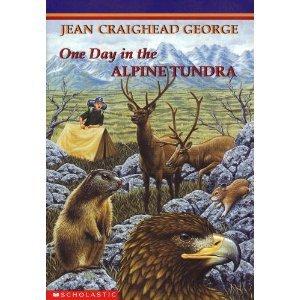 One Day in the Alpine Tundra PDF