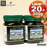 アクティブマヌカハニー UMF20+ 250g 2個セット ハニーバレー(100% Pure New Zealand Honey)マヌカ蜂蜜