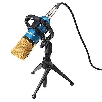 agptek 1 condensateur sound studio microphone microphone d 39 enregistrement micro dynamique. Black Bedroom Furniture Sets. Home Design Ideas