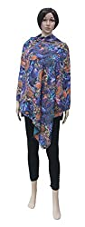 Romano Women's Multi-Coloured Winter Wear Shawl