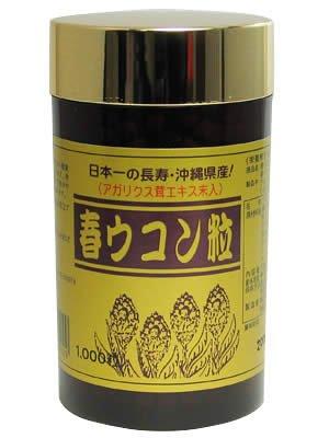 沖縄発酵 春ウコン粒 1000粒