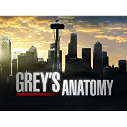 Grey's Anatomy Season 8