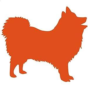 Amazon.com - Japanese Spitz Dog Decal Sticker (orange, 8 inch