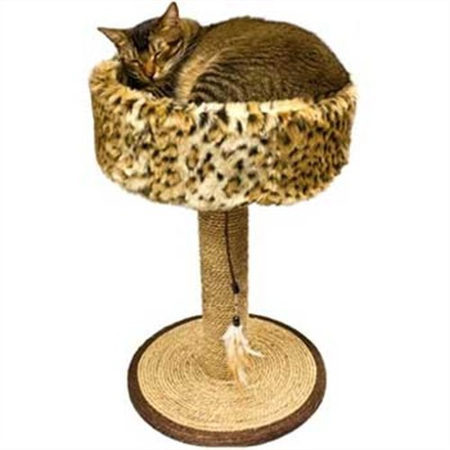 Ware Manufacturing Seagrass Wildcat Scratch and Sleep Scratch Post (Ware Scratching Post compare prices)