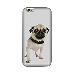 Aaranis designed Iphone 7, 7S Mobile Backcover with perfect Matte Finishing pug Graffiti & Illustrations(Multicolor)