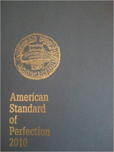 American Standard Of Perfection 2010 Toolfanatic Com