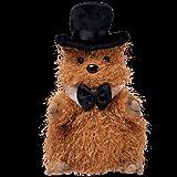 TY Beanie Baby - PUNXSUTAWNEY PHIL 2005 the Groundhog