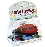 Lucky-Ladybug-Pull-The-Tab-Cloth-Books