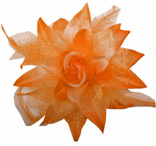 Webb Direct 2U Dotted Silk Flw Clip Feathers ~ Orange (1086) front-1015125
