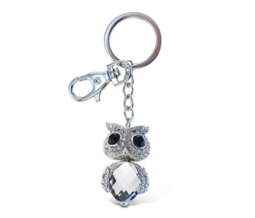 Puzzled Clear Big Eyed Owl Sparkling Charm Keychain